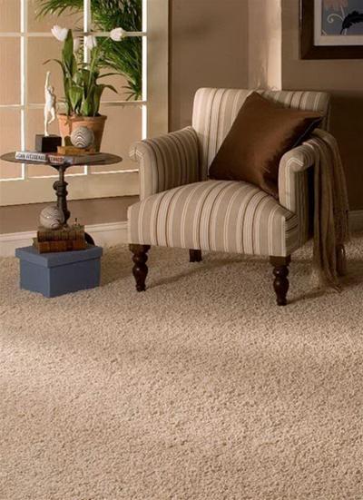 Thảm trải sàn và không gian nội thất 2